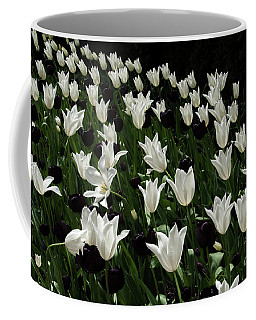 A Study In Black And White Tulips Coffee Mug