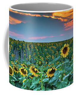 A Summer Softness In Colorado Coffee Mug
