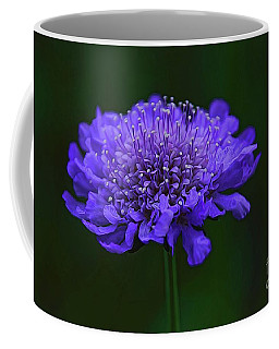 A Sweet Scabiosa Coffee Mug