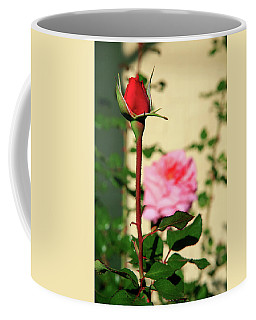 Coffee Mug featuring the photograph A Tale Of Two Roses by Lon Casler Bixby