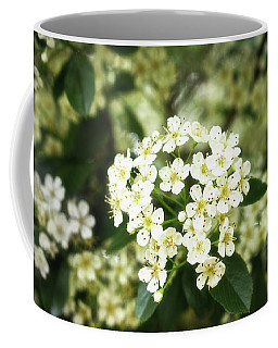 A Thousand Blossoms 3x2 Coffee Mug