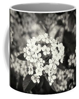 A Thousand Blossoms In Sepia 3x4 Flipped Coffee Mug