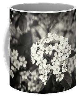 A Thousand Blossoms Sepia 3x2 Coffee Mug