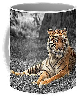 A Tiger Relaxing On A Cool Afternoon II Coffee Mug