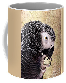Coffee Mug featuring the photograph A Touch Of Grey by Betty LaRue