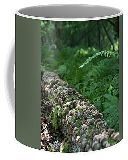 A Touch Of Sun Coffee Mug