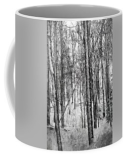 A Tree's View In Winter Coffee Mug