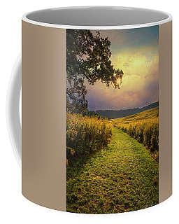 Coffee Mug featuring the photograph A Walk In Solitude by John Rivera