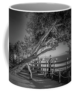 A Walk In The Park B And W Coffee Mug