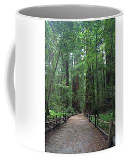 A Walk In The Tall Trees Coffee Mug