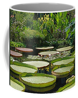 Coffee Mug featuring the photograph A Water Garden by Byron Varvarigos