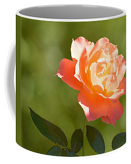 Coffee Mug featuring the photograph A Well Lighted Rose by AJ Schibig