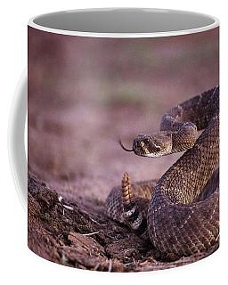 A Western Diamondback Rattlesnake Coffee Mug