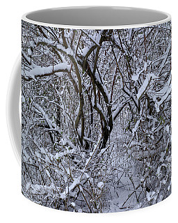 Coffee Mug featuring the photograph A Winter Bramble by Scott Kingery
