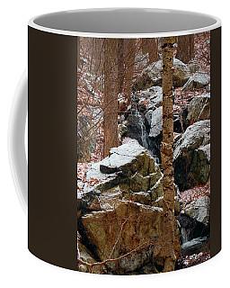 A Wood's Waterfall  Coffee Mug by Raymond Salani III