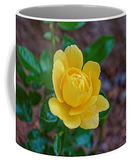 A Yellow Rose Coffee Mug