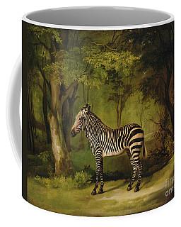 A Zebra Coffee Mug