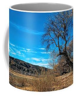 Forgotten Park Coffee Mug