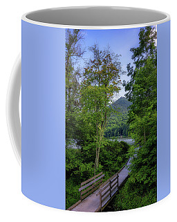 Abbott Lake Trail Coffee Mug