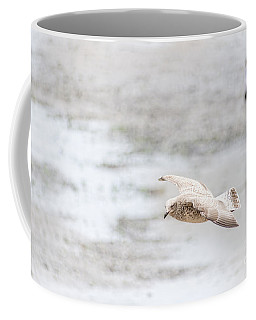 Coffee Mug featuring the photograph Above The Watten Sea 2 by Hannes Cmarits