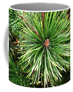 Abstract Nature Green Pine Tree Macro Photo 210  Coffee Mug