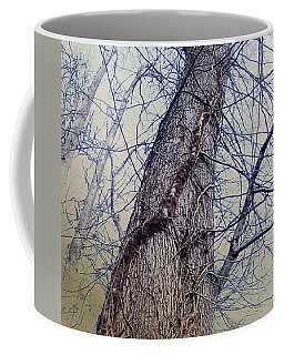 Coffee Mug featuring the photograph Abstract Tree Trunk by Robert G Kernodle