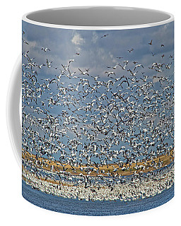 Coffee Mug featuring the photograph Abundance.. by Nina Stavlund