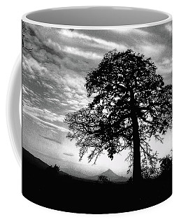 Acacia And Volcano Silhouetted Coffee Mug