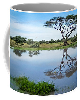 Acacia Tree Reflection Coffee Mug