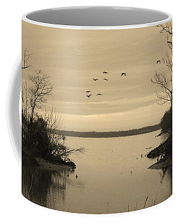 Accokeek Creek Coffee Mug