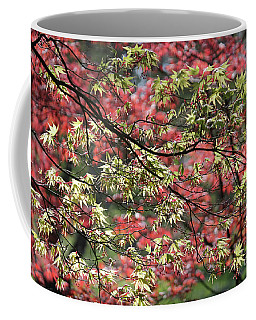 Acer Leaves In Spring Coffee Mug