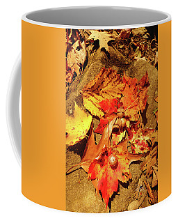 Acorns Fall Maple Leaf Coffee Mug