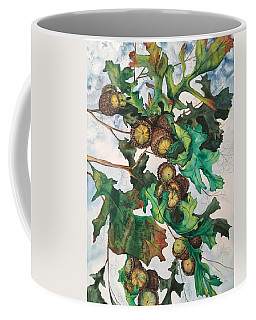 Acorns On An Oak  Coffee Mug