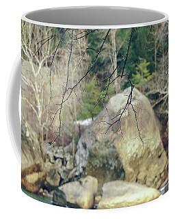 Across From Eagle Falls Coffee Mug