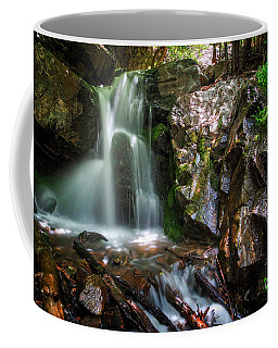 Coffee Mug featuring the photograph Adams Canyon Oasis by Spencer Baugh