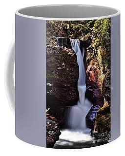 Adams Falls Coffee Mug