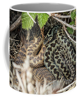 Adder Pair Coffee Mug