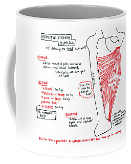 Adductor Magnus Coffee Mug