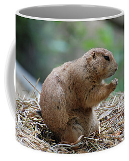 Adorable Prairie Dog With His Paws Folded In Prayer Coffee Mug