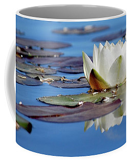 Coffee Mug featuring the photograph Adoring White by Amee Cave