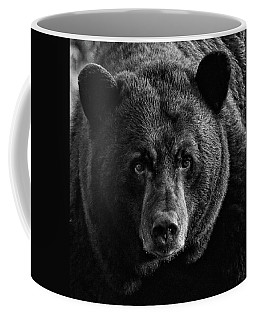 Adult Male Black Bear Coffee Mug