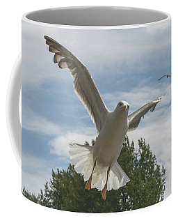 Adult Seagull In Flight Coffee Mug