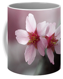 Coffee Mug featuring the photograph Affection by Joseph Skompski