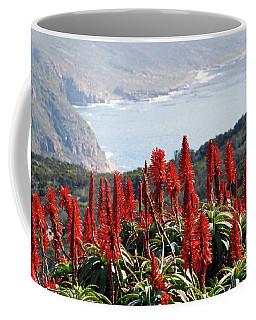 African Aloe And False Bay Coffee Mug