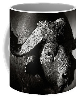 African Buffalo Bull Close-up Coffee Mug