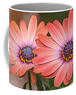 African Daisy Coral Coffee Mug