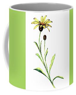 African Daisy Coffee Mug by Heidi Kriel