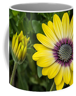 African Daisy Yellow Au Naturel Coffee Mug