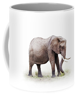 African Elephant Grazing - Isolated On White Coffee Mug