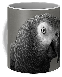 African Gray Coffee Mug